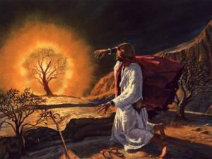 Imagem foto jesus cristo (268)